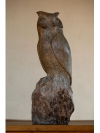 Owl by Michael Cooper