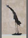 Bark Bird I by Steven Gregory